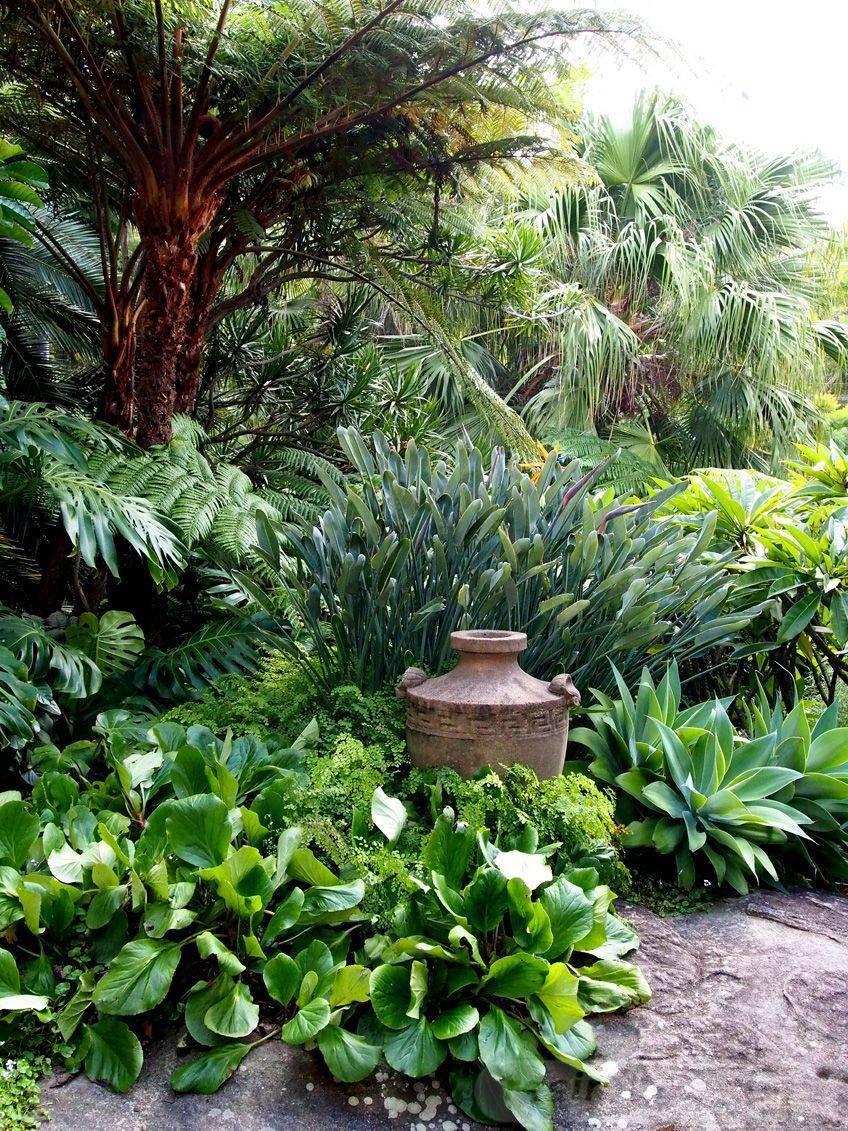 garden pot design-369858188126275089