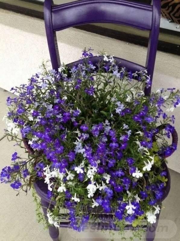 garden pot design-623959723354542699