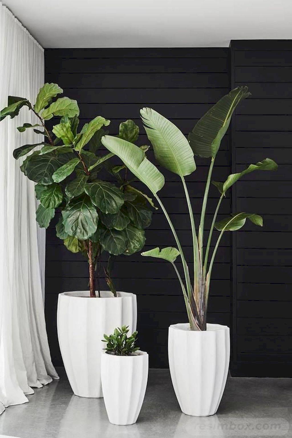 garden pot design-649222102514655727