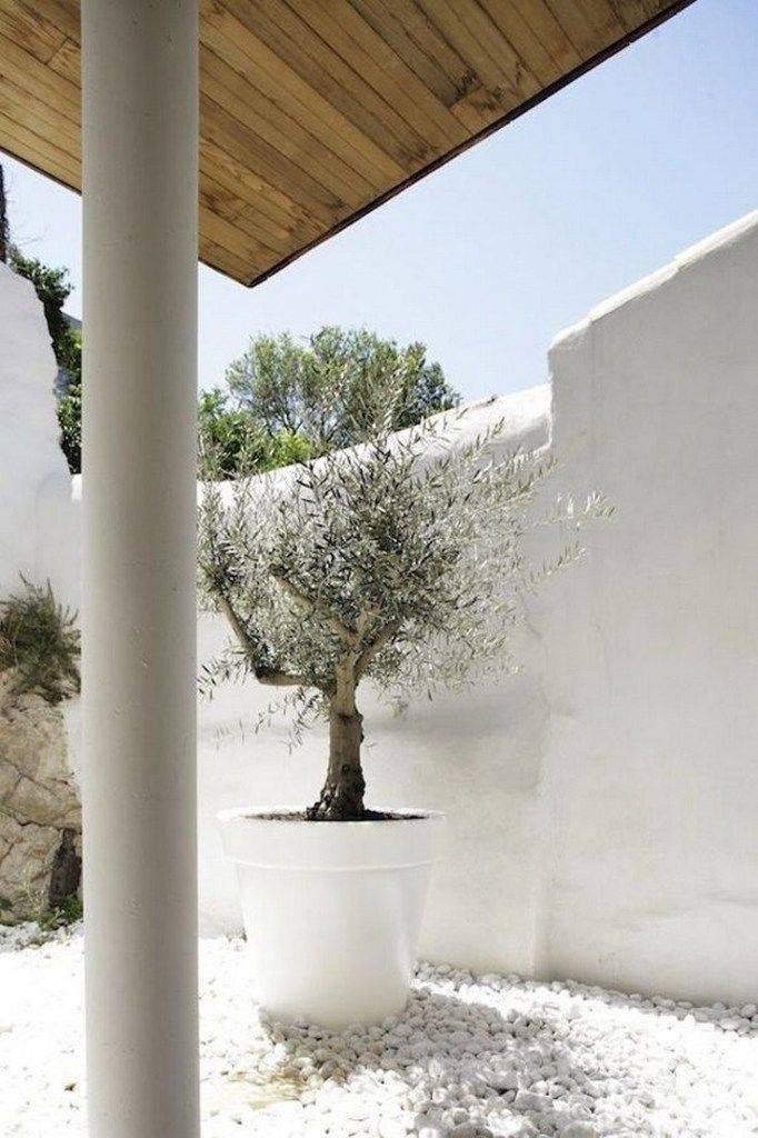 garden pot design-620230179911883630