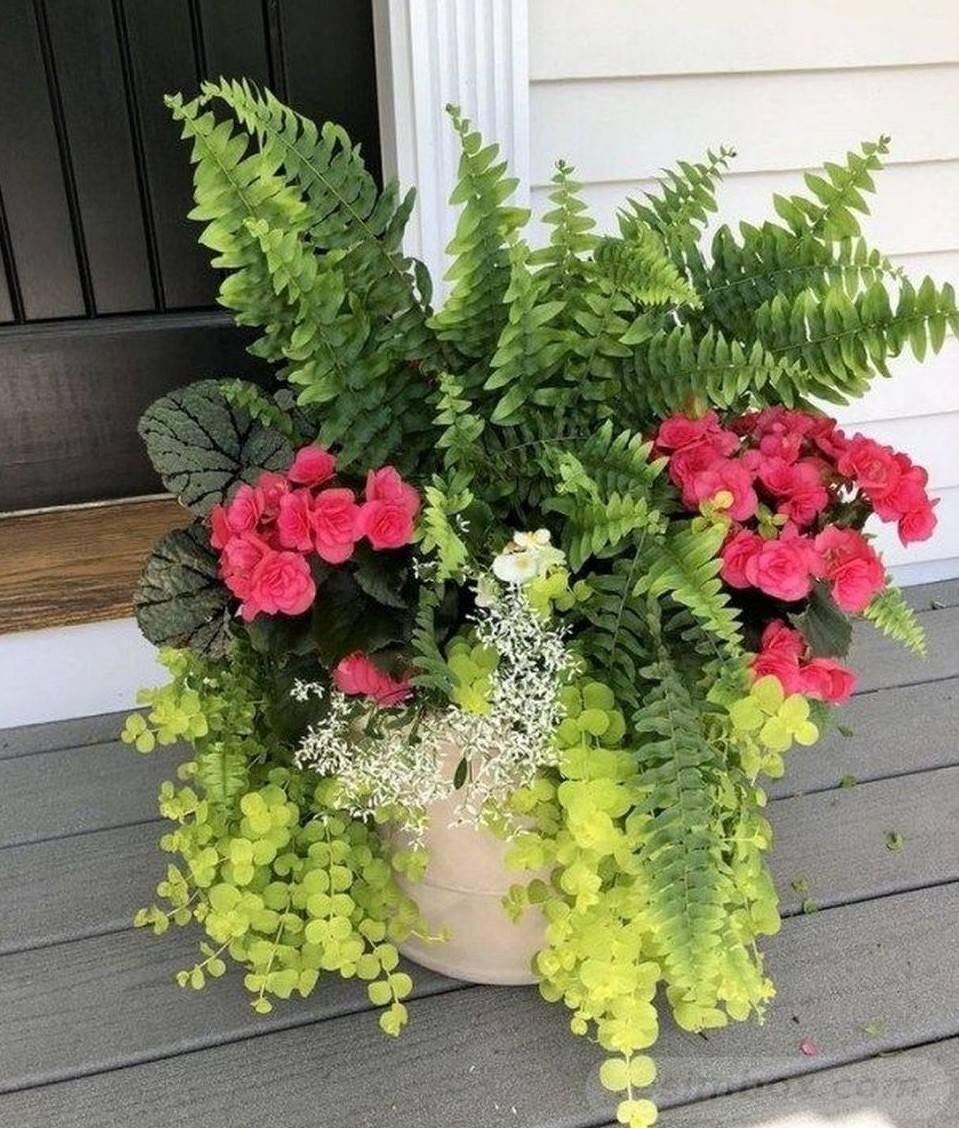 garden pot design-589760513684415225