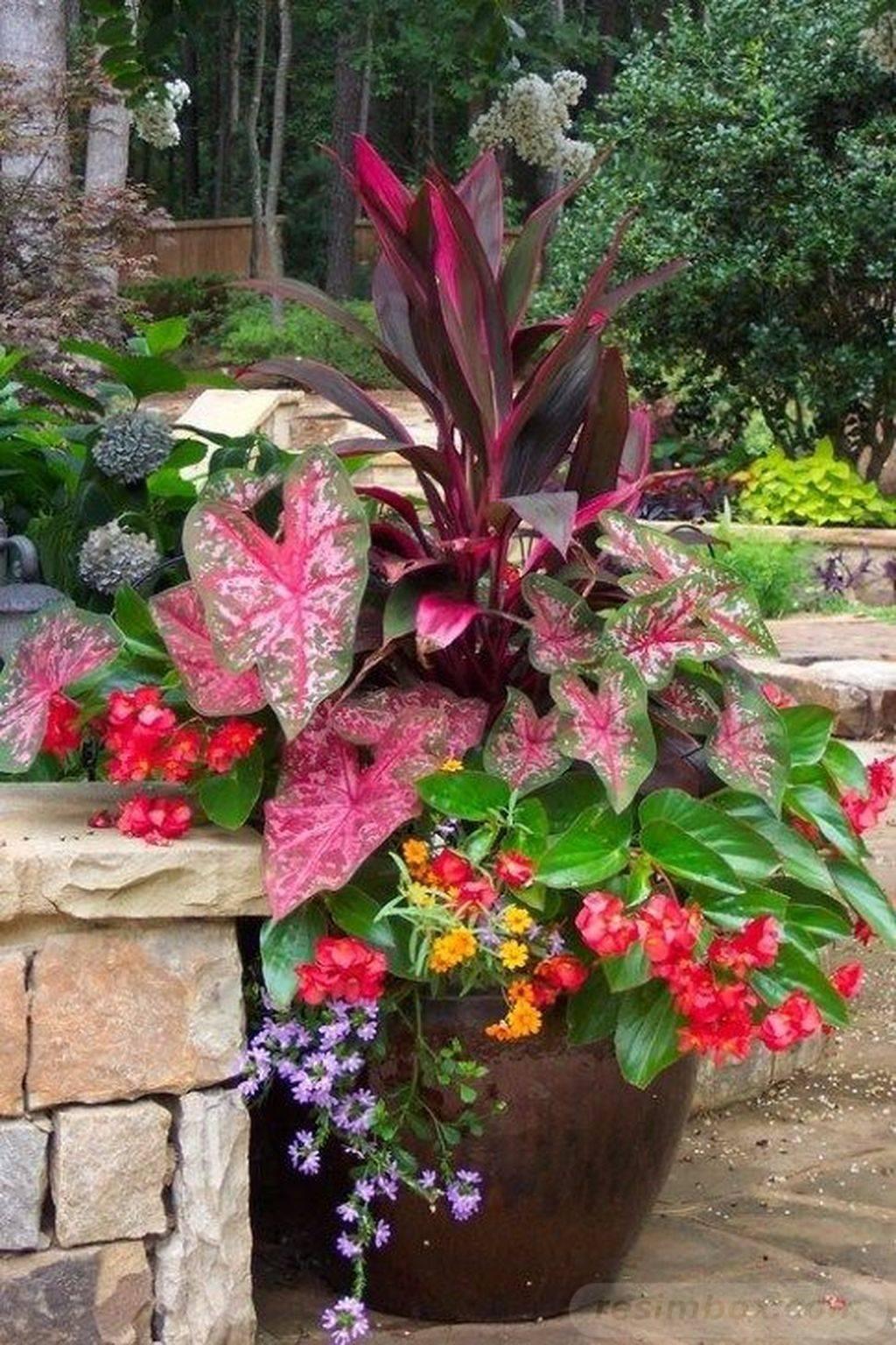 garden pot design-589760513684409981