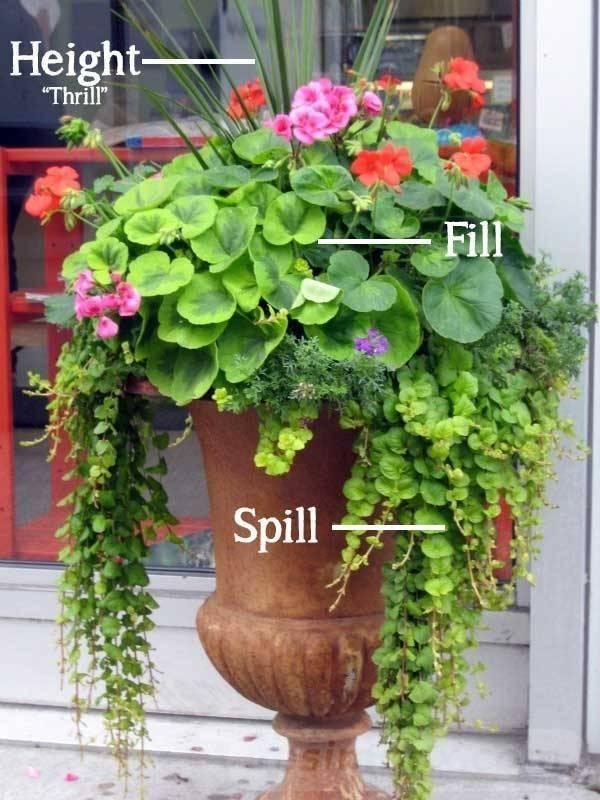 garden pot design-266979084146804948