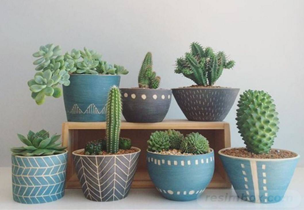 garden pot design-778982066772891694