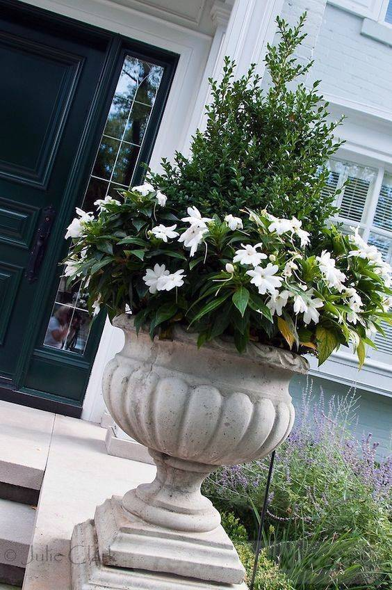 garden pot design-629941066609308041