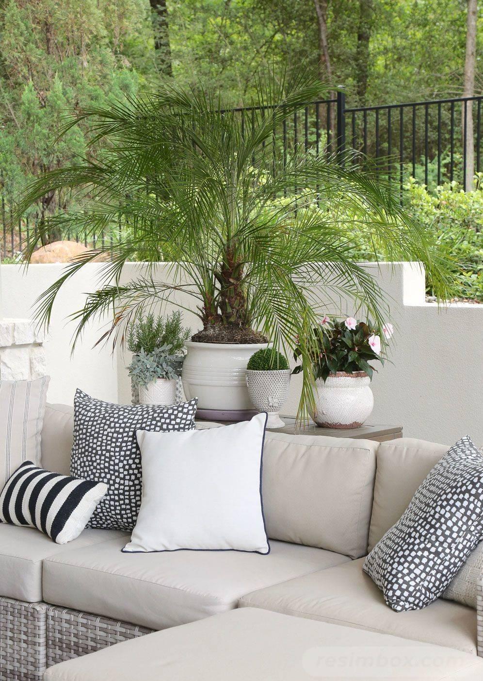 garden pot design-214835844710838082