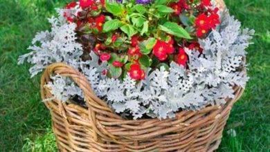 12 Coolest Fascinating Low-Budget Dıy Garden Pots