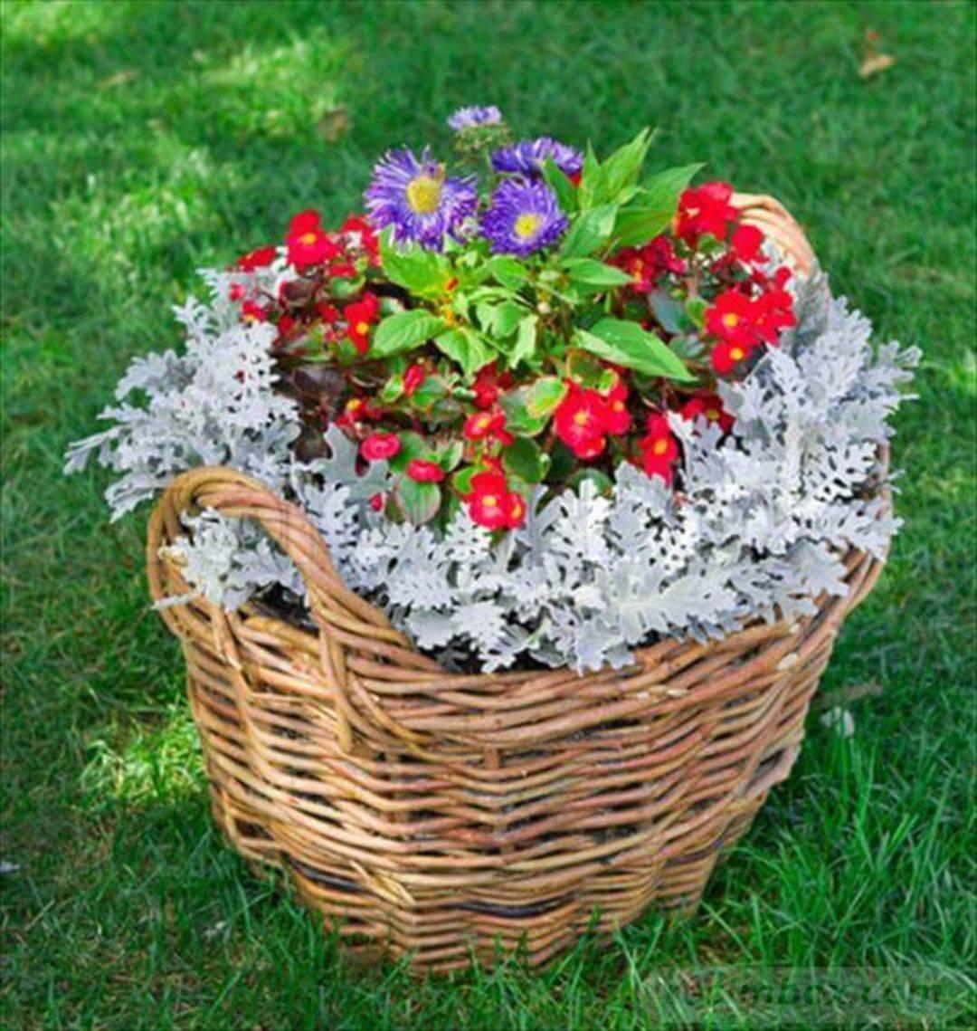 garden pot design-505951339386609954