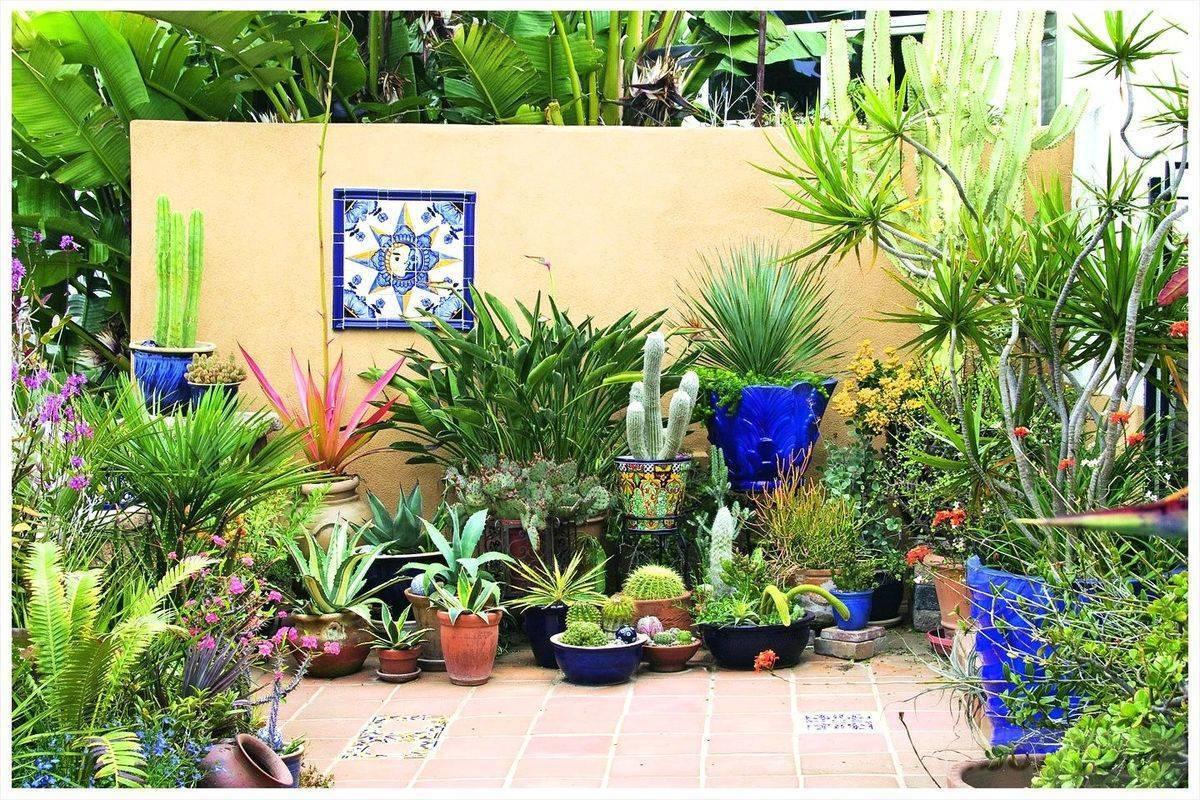 garden pot design-720224165384612201