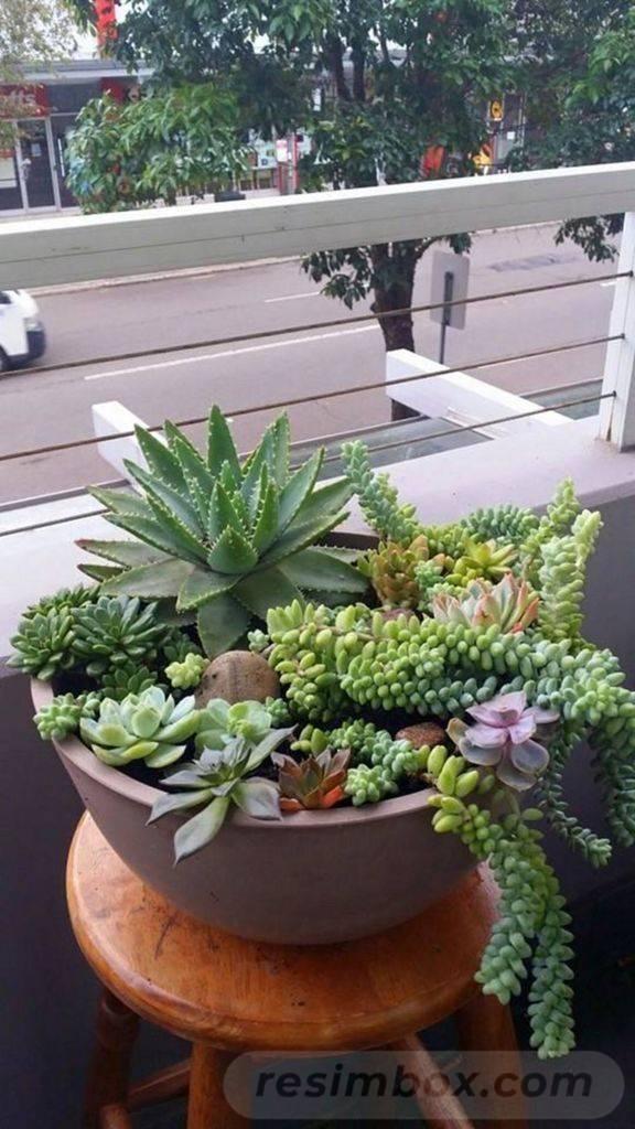 garden pot design-584623595359511824
