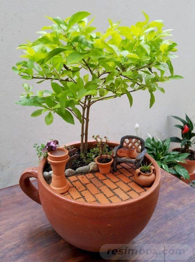 garden pot design-623748617122594590