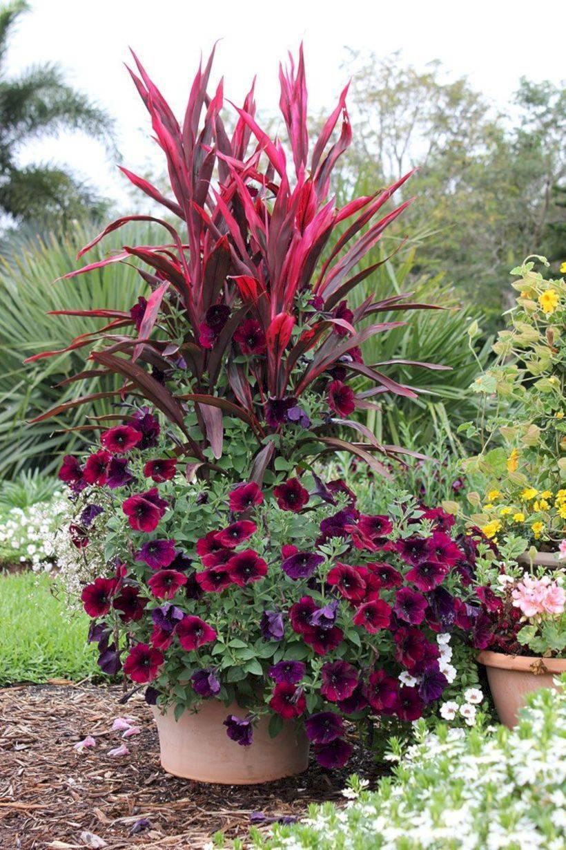 garden pot design-686447168184069031
