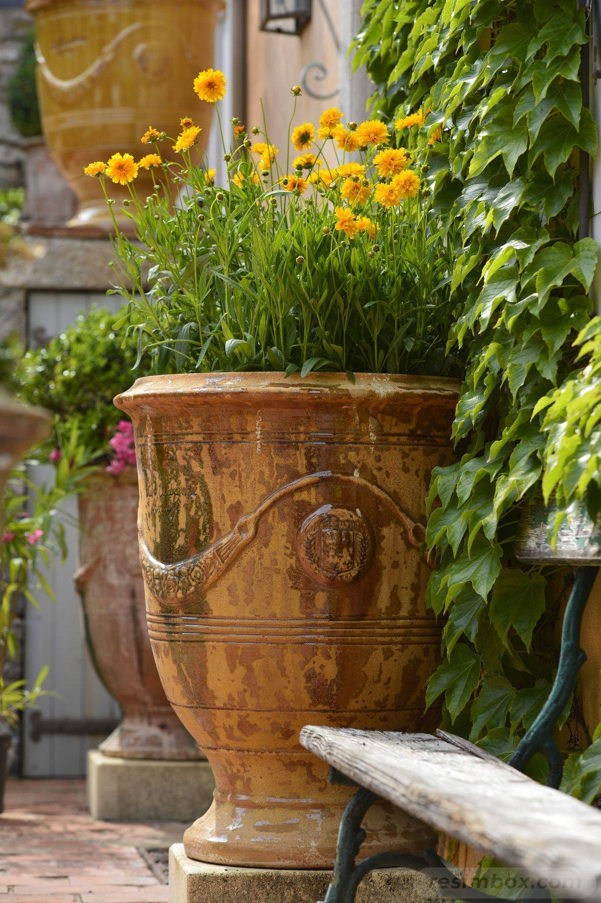 garden pot design-321092648418828254