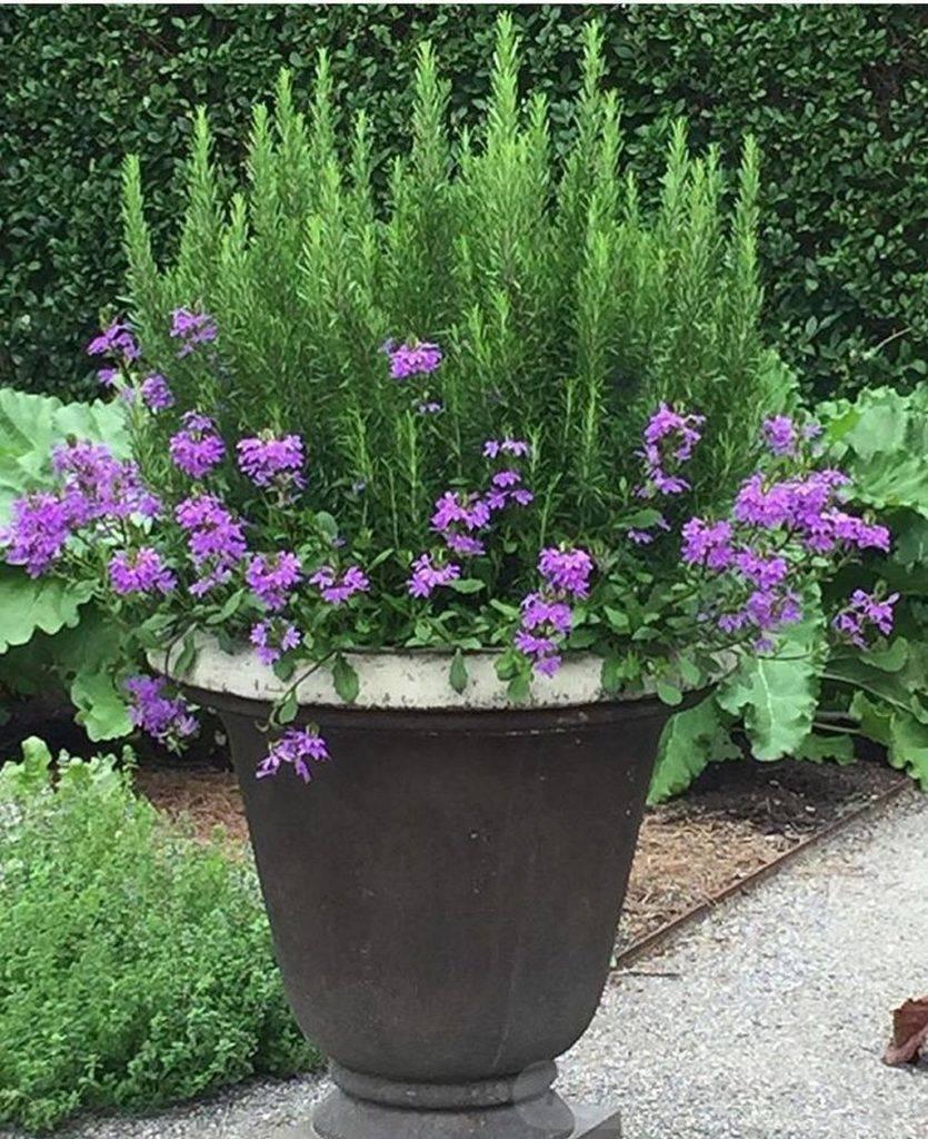garden pot design-315111305177229615