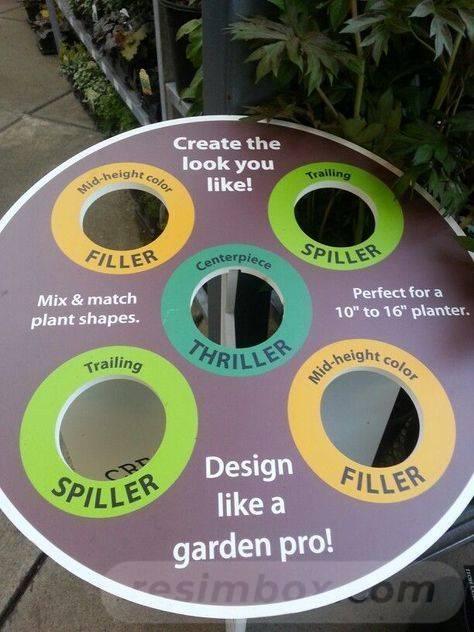 garden pot design-689121180463498581