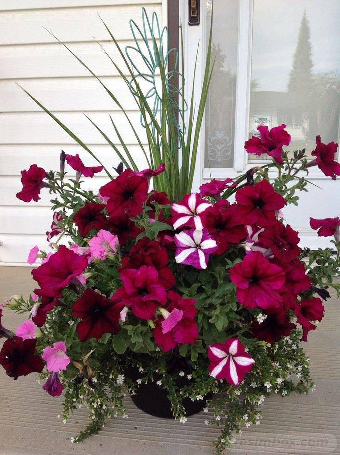 garden pot design-782219029009506499