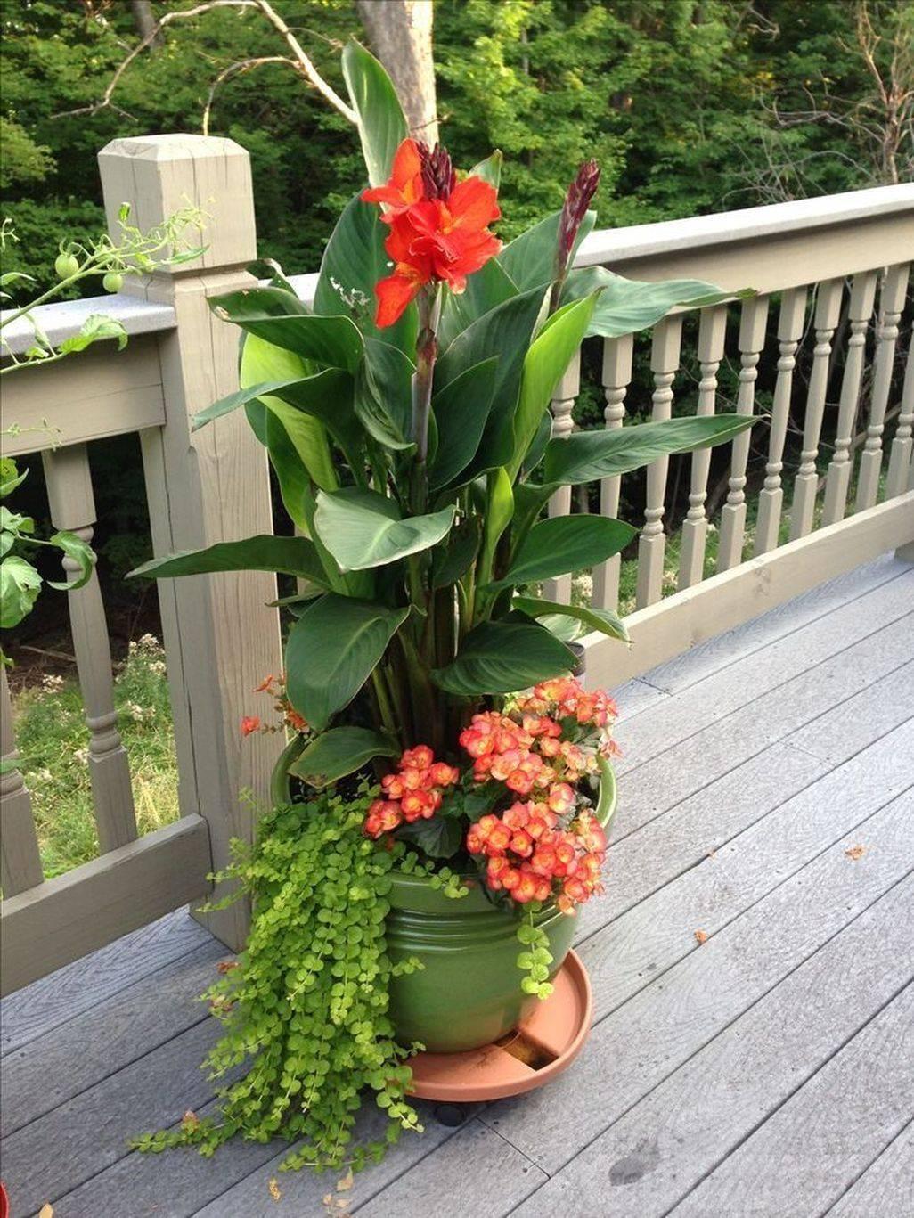garden pot design-348817933637330118