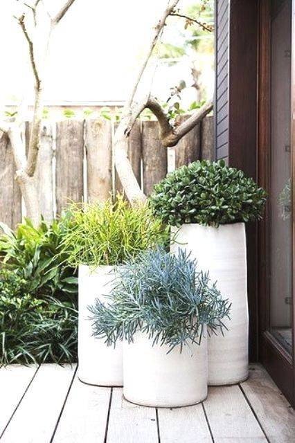 garden pot design-824158800539574584
