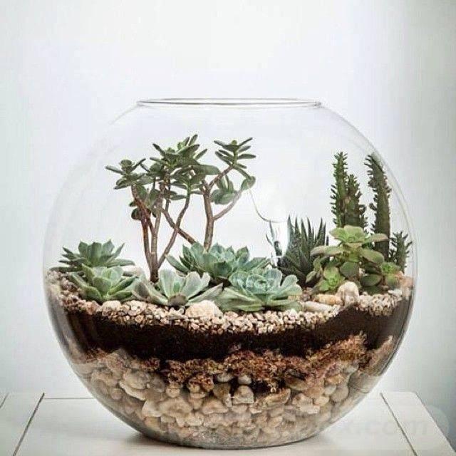 garden pot design-582864376751300457