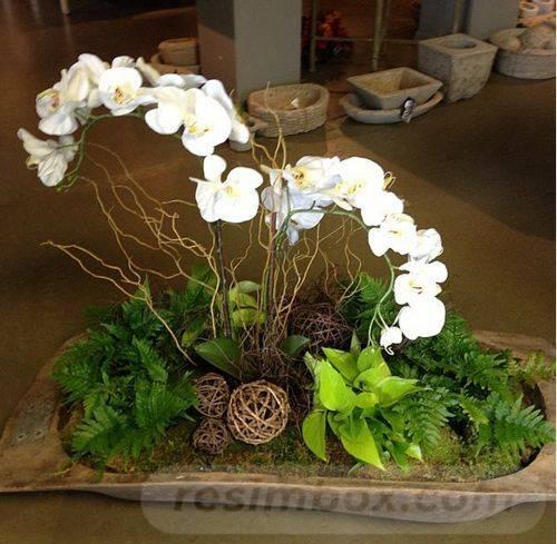 garden pot design-298996862750889714