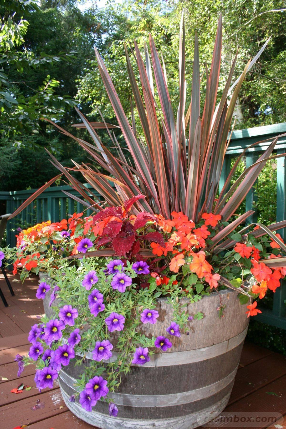 garden pot design-411797959675360186