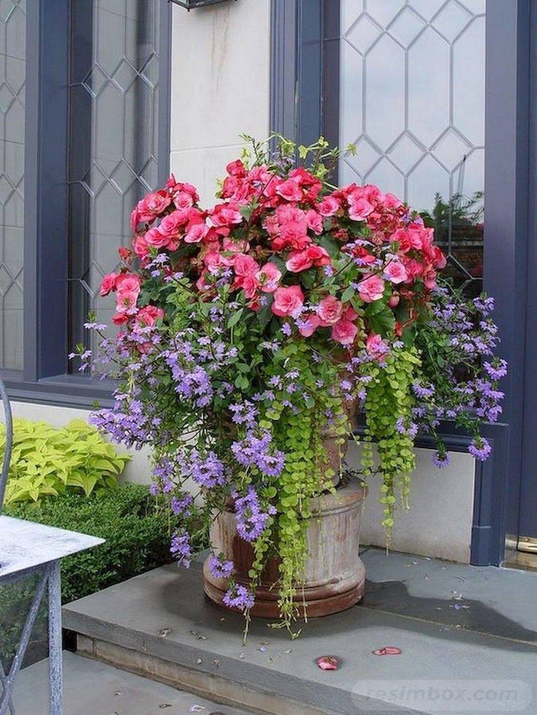 garden pot design-812759063982903371