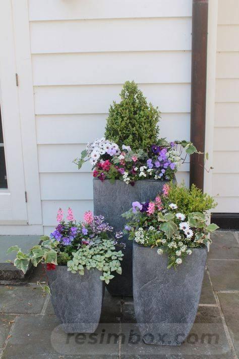 garden pot design-836121487048352181