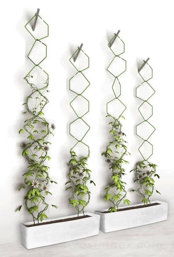 garden pot design-837317755702256767