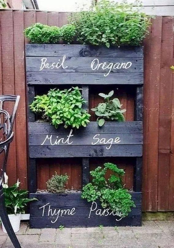 garden pot design-746119863247910884