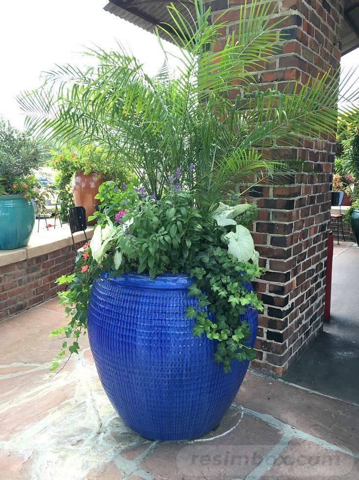 garden pot design-253820128982330284