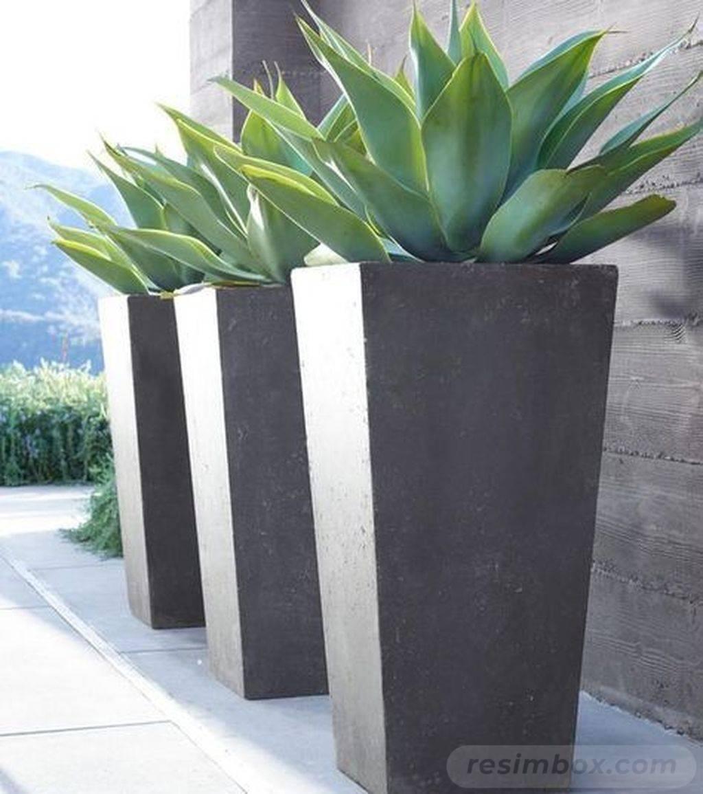 garden pot design-743938432177768646