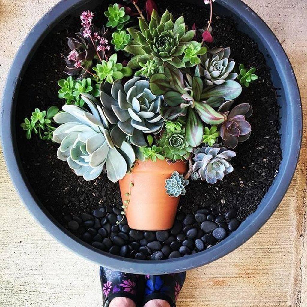 garden pot design-733664595527625173