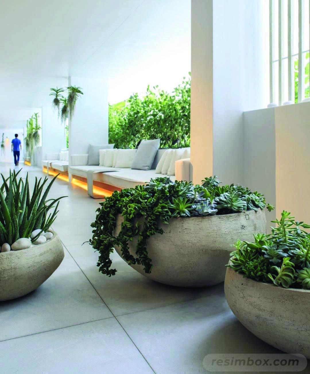 garden pot design-641974121862836064