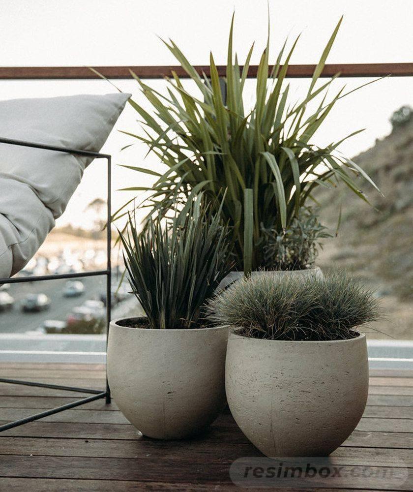 garden pot design-179158891411381409