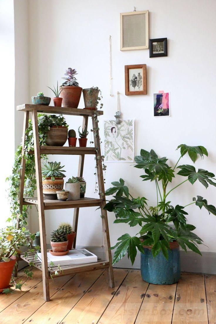 garden pot design-331647960051698984
