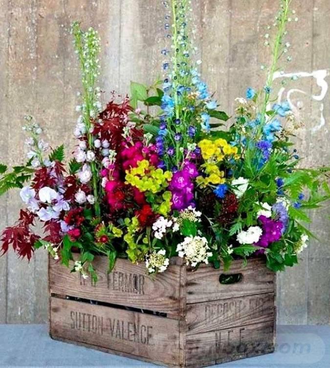 garden pot design-807692514401102779