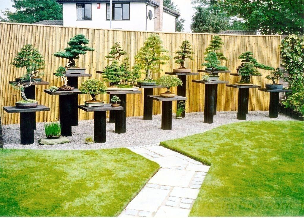 garden pot design-566046246914603958