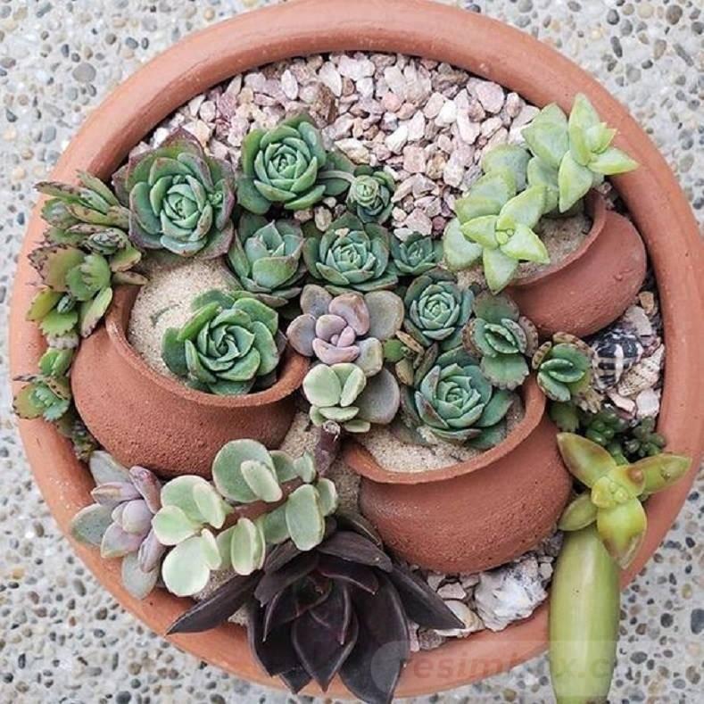 garden pot design-391602130099050458