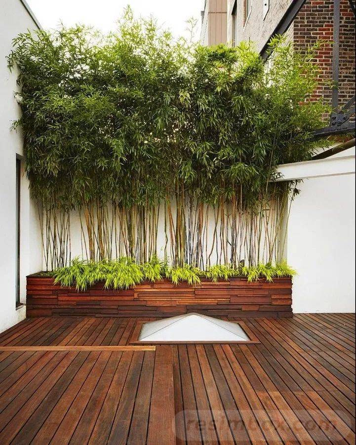 garden pot design-654359020839103770