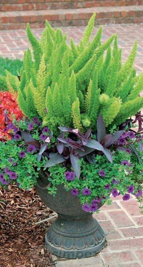 garden pot design-509962357807278906
