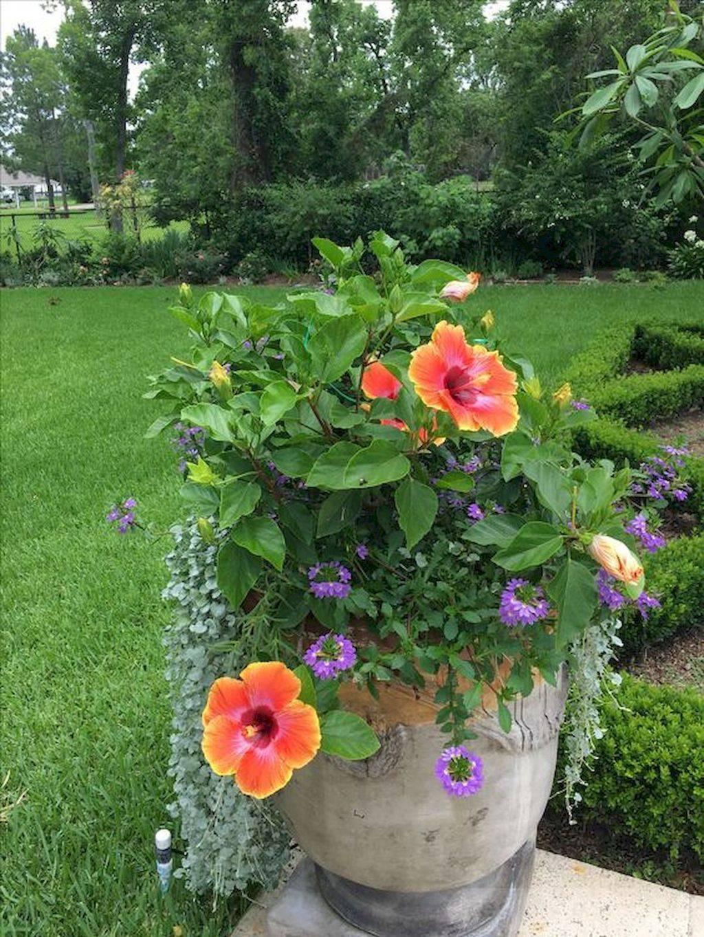 garden pot design-583779170429832504