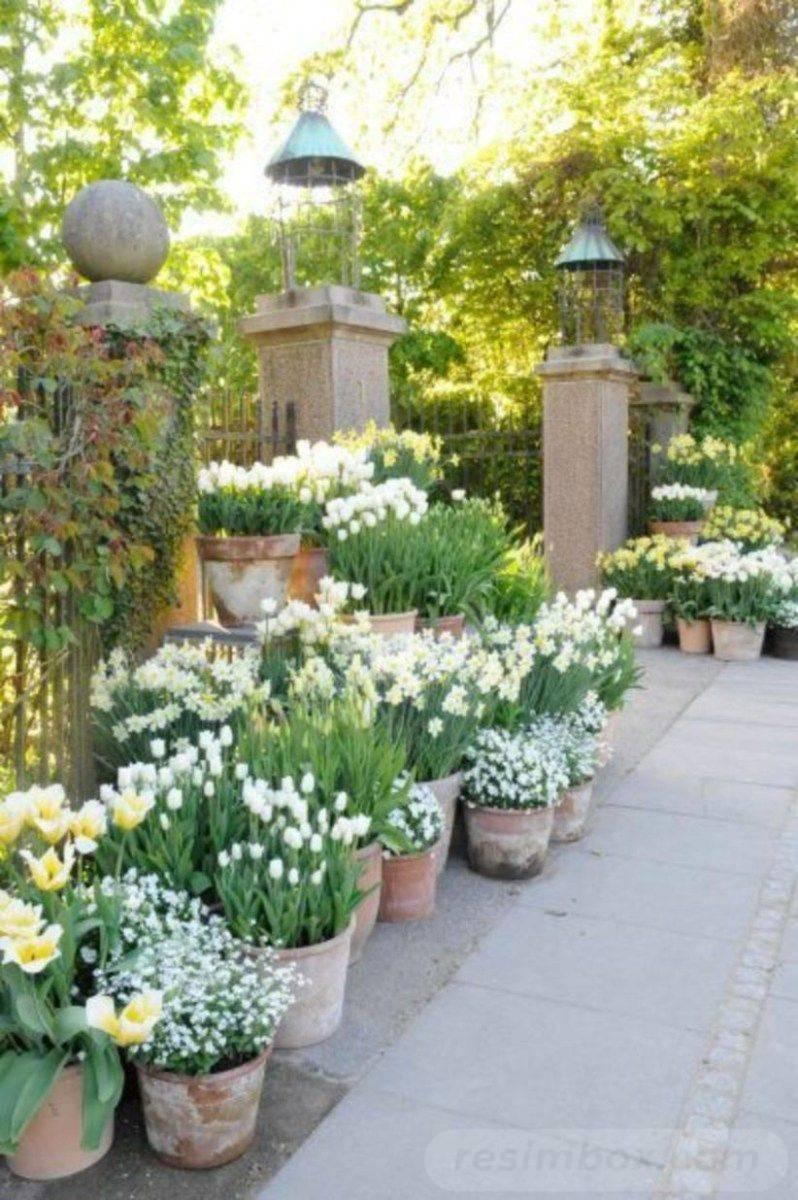 garden pot design-79657487145098671