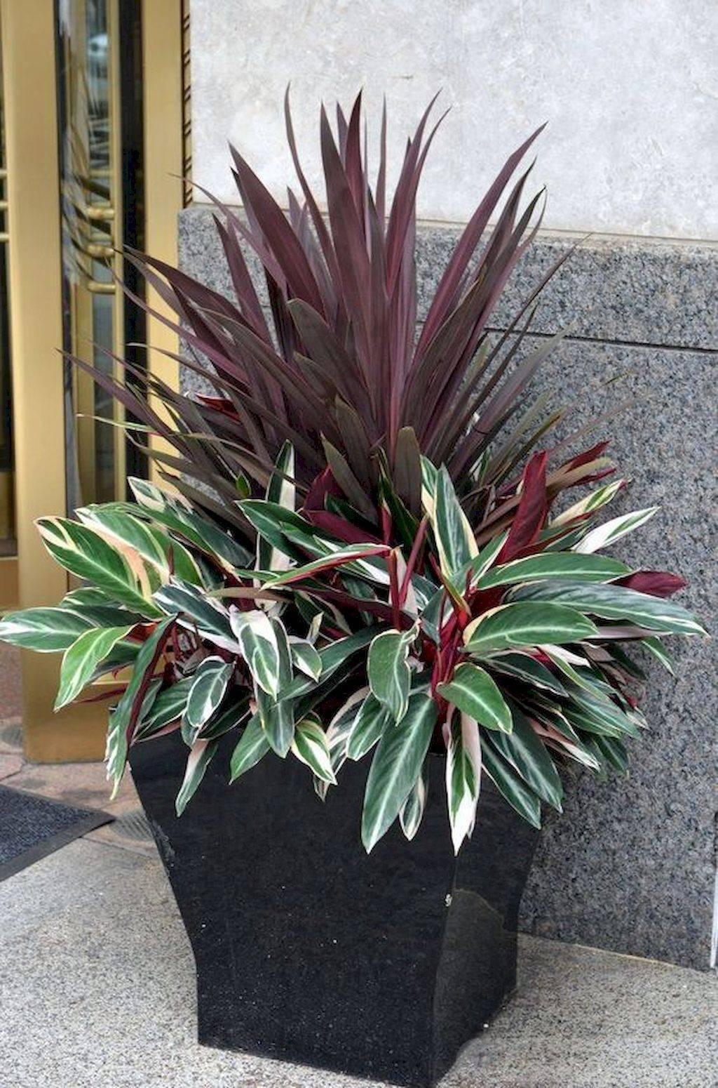 garden pot design-757097387338731053