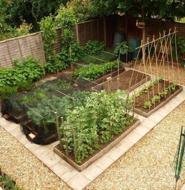 garden pot design-617345061402756146