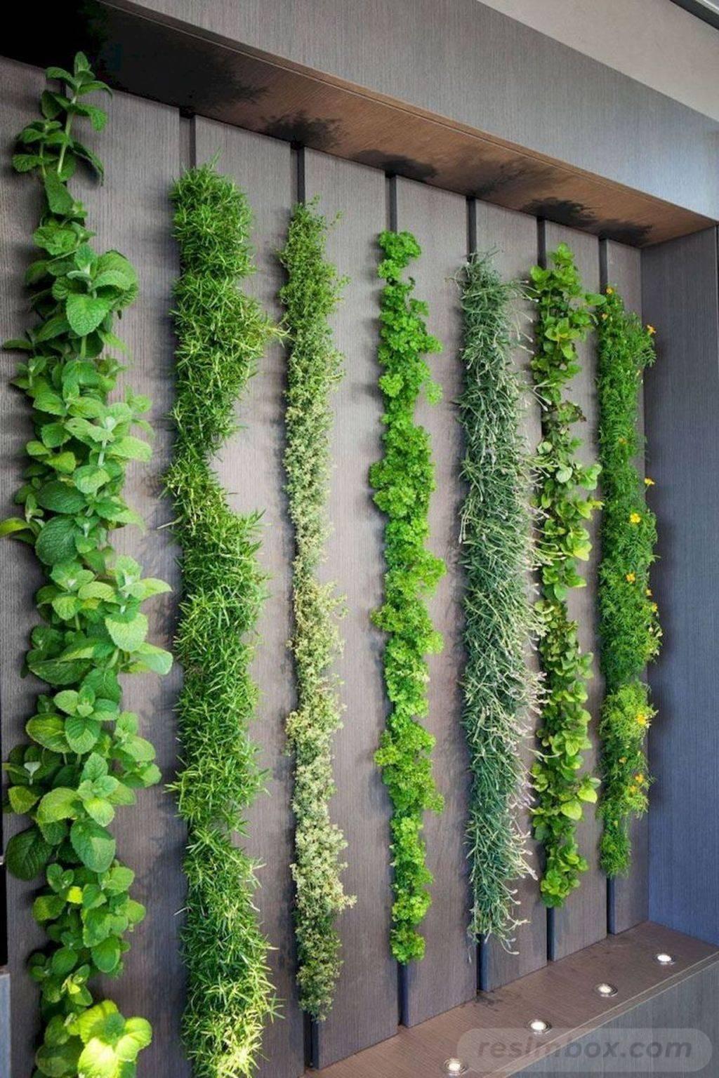 garden pot design-603060206334859530