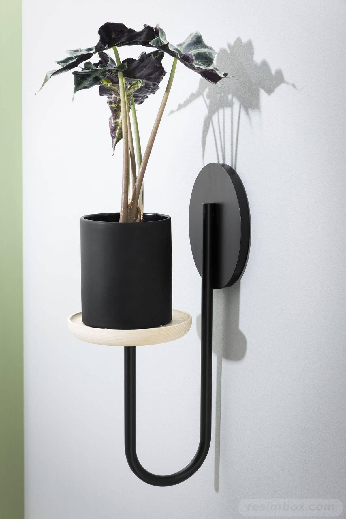garden pot design-363595369911941777