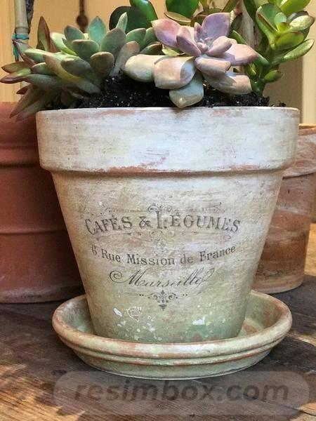 garden pot design-436567757629709443