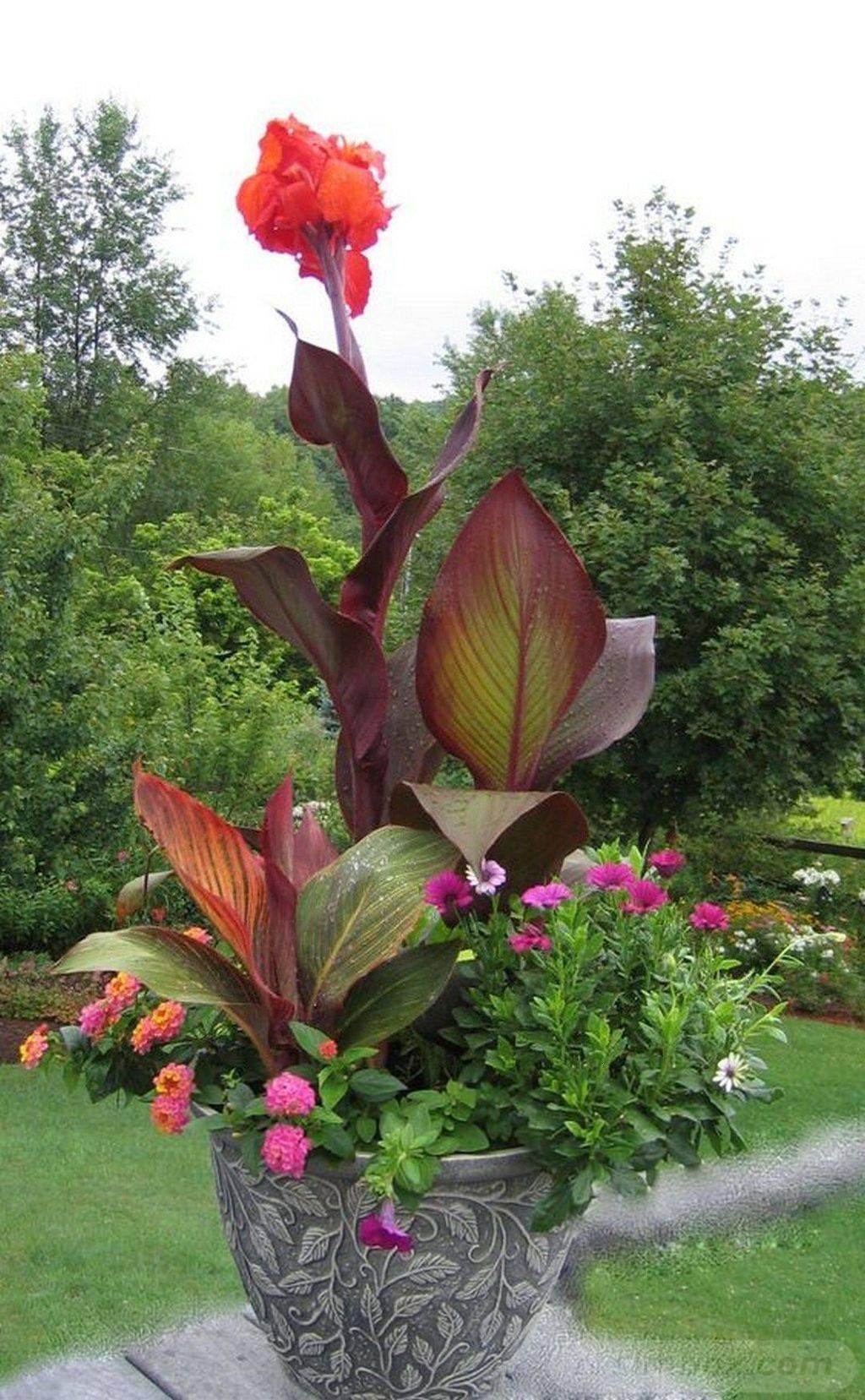 garden pot design-583779170429312907
