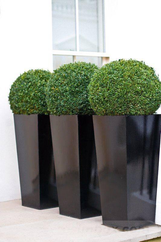 garden pot design-109986415872024711