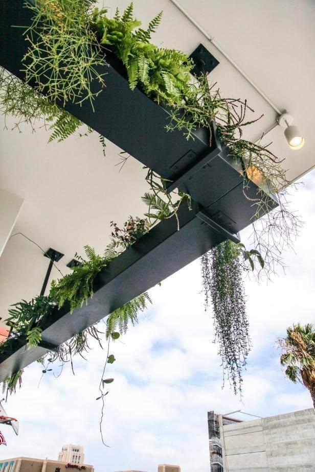 garden pot design-297800594107564684